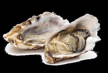 oesters-the-black-tie-vers-koken-culinair-eten-restaurant-asserbos-assen